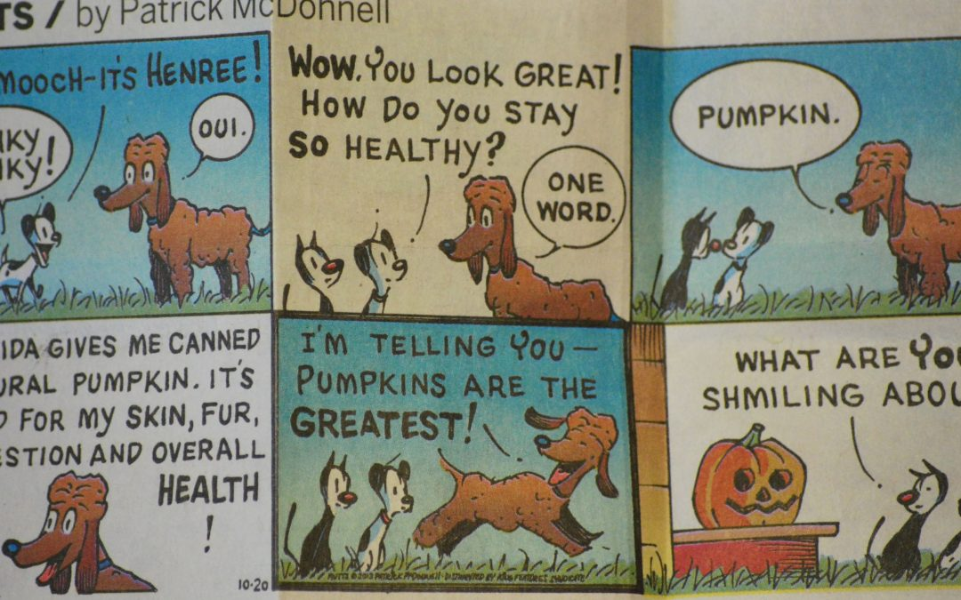 Comical Pumpkin